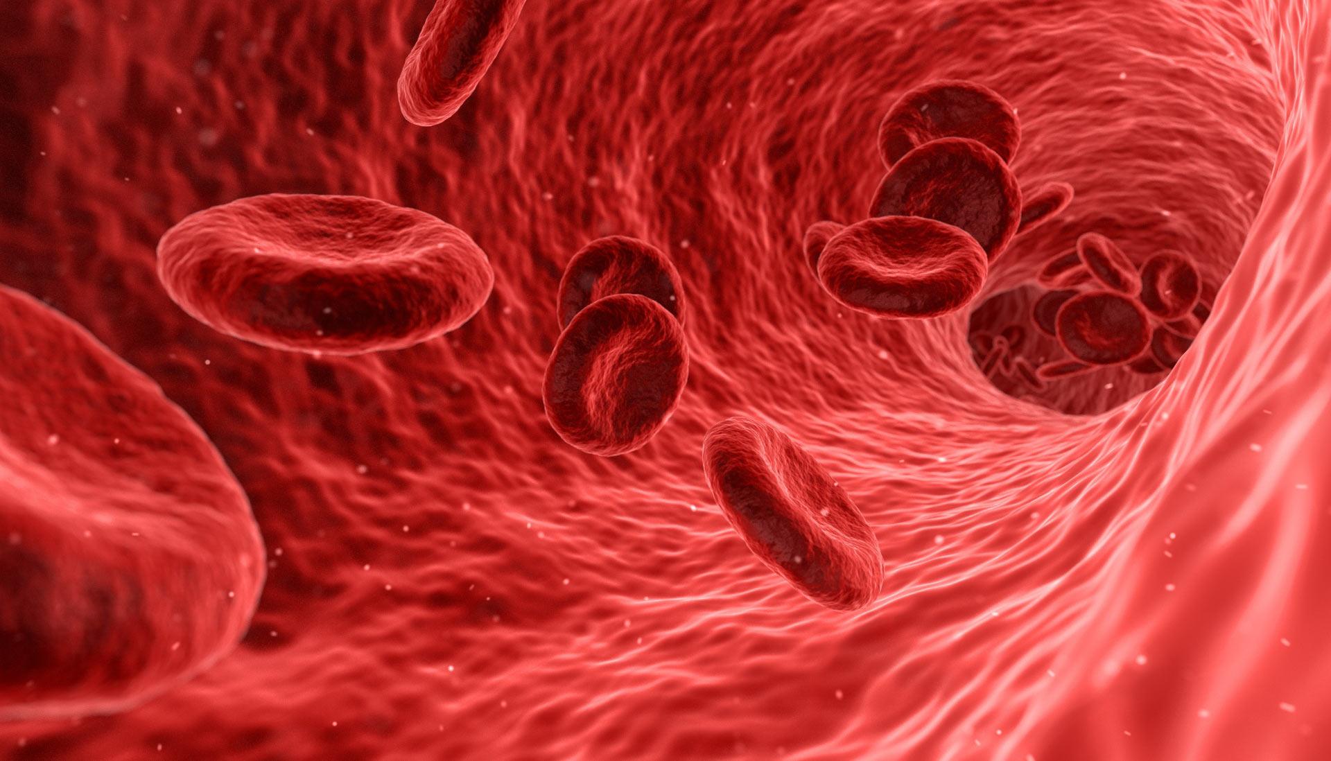 الأوعية الدموية المتولدة: الحليف الاستراتيجي للأورام السرطانية
